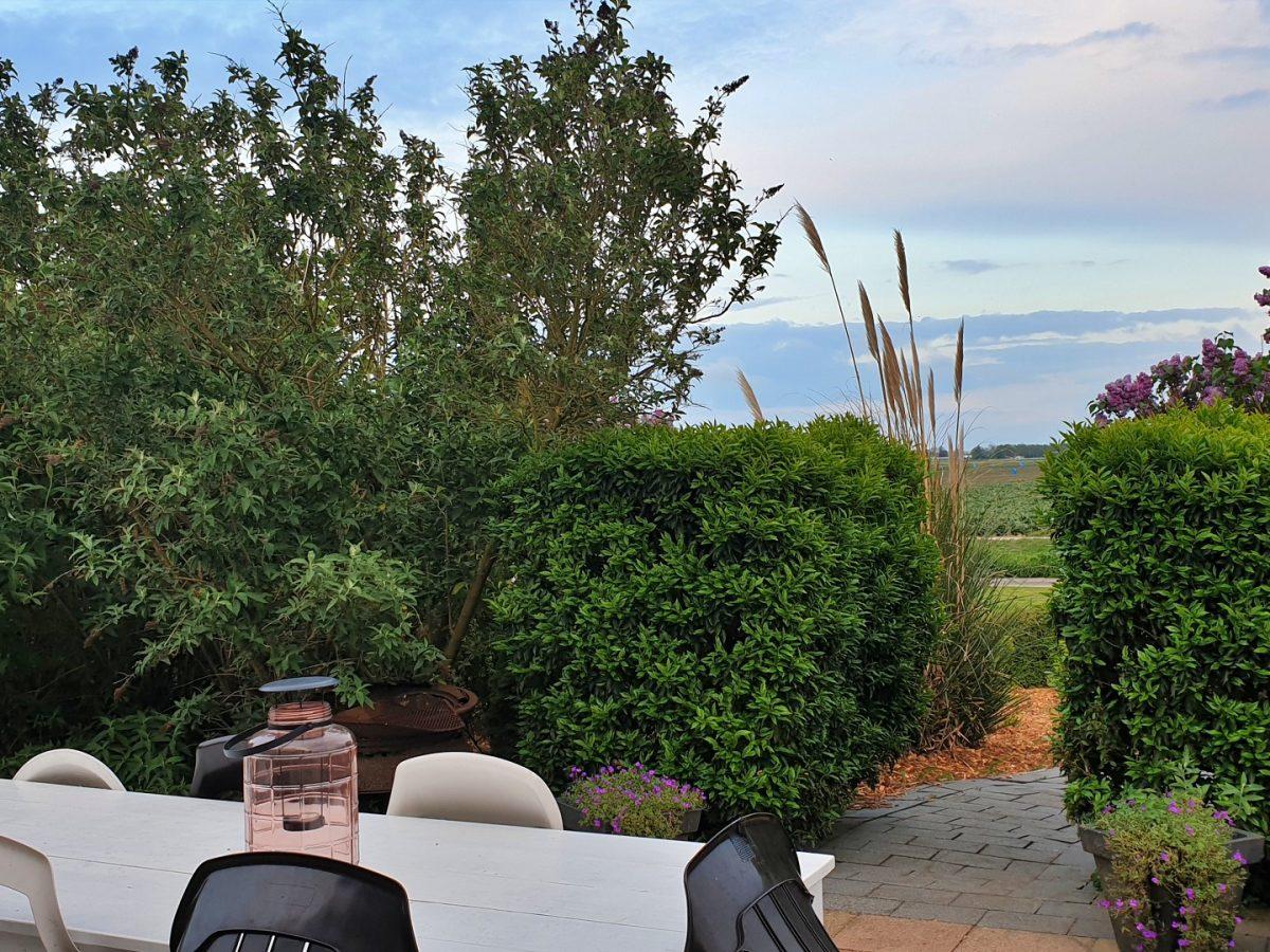 achtertuin terrasje vakantiehuis bedandbreakfast hotel lanormande-13