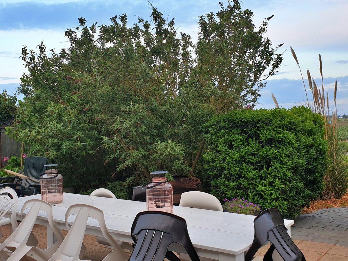 achtertuin terrasje vakantiehuis bedandbreakfast hotel lanormande-21