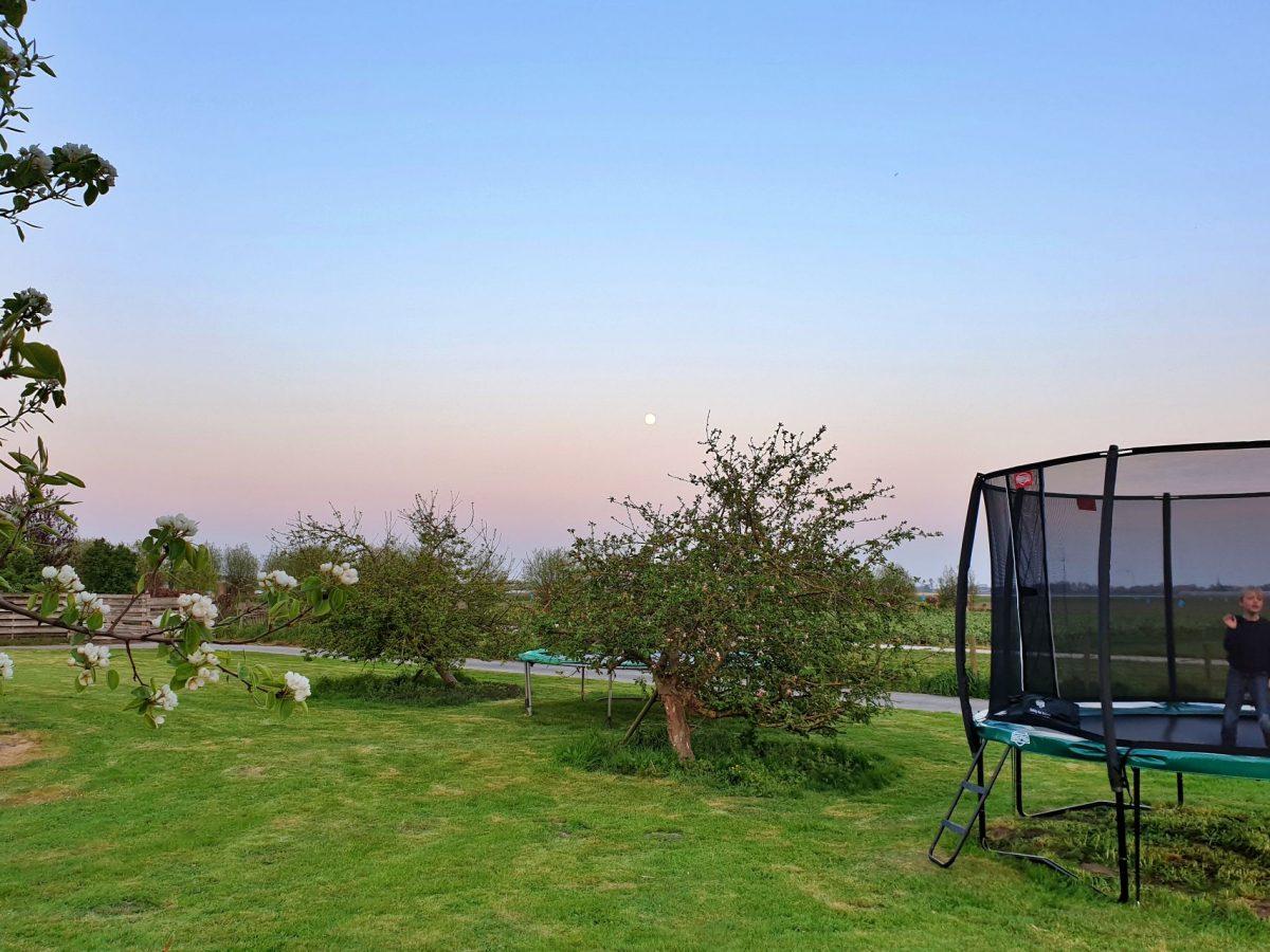 trampoline speeltuin vakantie bed and breakfast hoorn lanormande-02