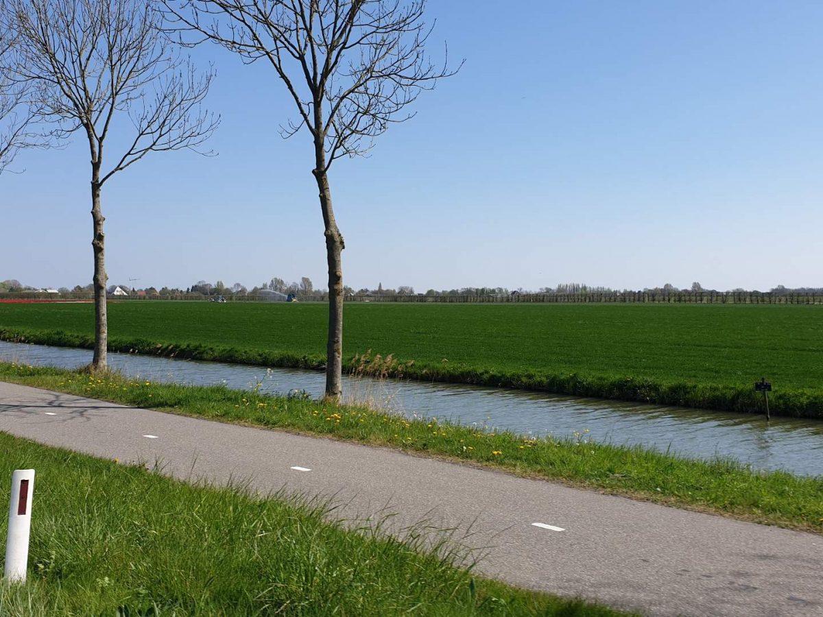 westwoud natuur in noord holland waterrijke omgeving28