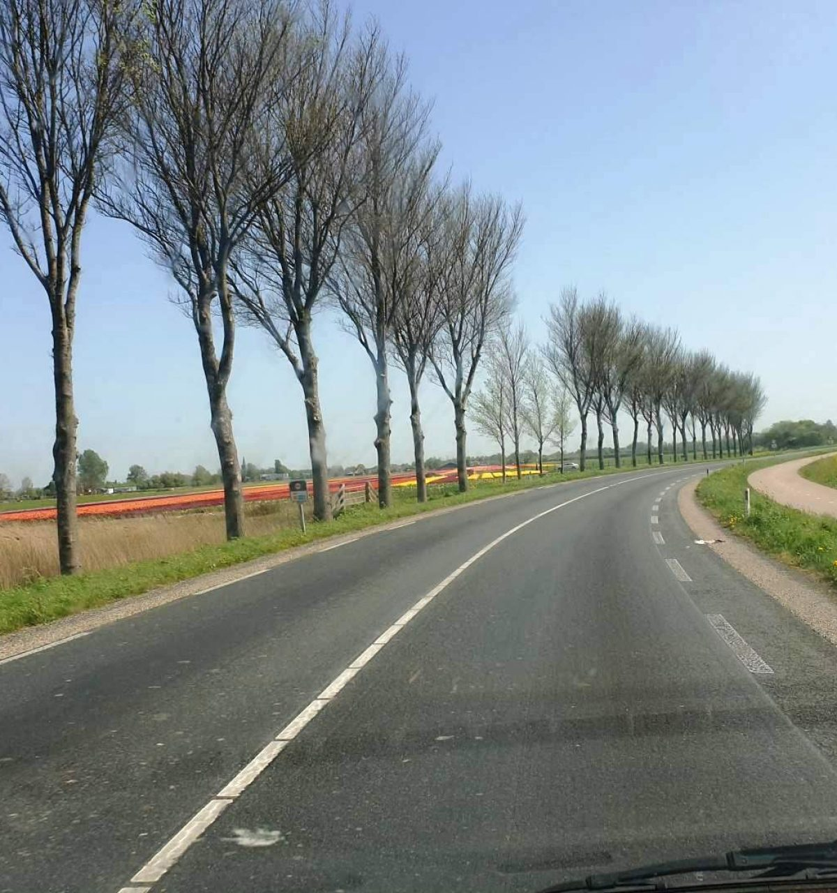 westwoud omgeving noord holland on road to amsterdam-62